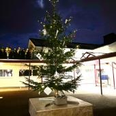 1_Weihnachtsbauma